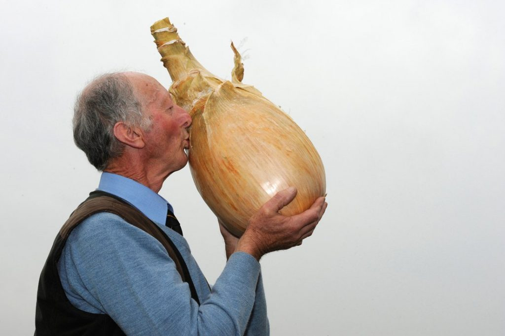 heaviest-onion-world-record
